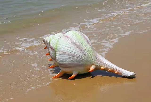 玻璃钢仿真海螺雕塑
